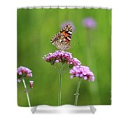 Painted Lady Butterfly In Green Field Shower Curtain
