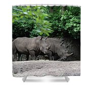 Pair Of Rhinos Standing In The Shade Of Trees Shower Curtain