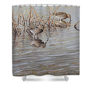 Pair Of Snipe By Alan M Hunt Shower Curtain