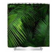 Palm Saturday Shower Curtain