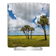 Palm Trees In The Field Of Coreopsis Shower Curtain