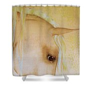 Palomino Head Study Shower Curtain by Valerie Anne Kelly
