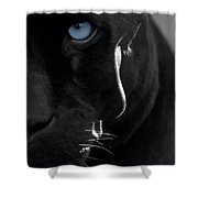 Pantheress Shower Curtain by ISAW Company