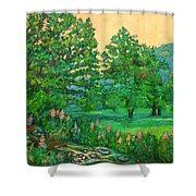 Park Road In Radford Shower Curtain