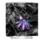 Passion Flower Only Alt Shower Curtain