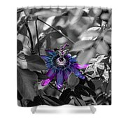 Passion Flower Only Shower Curtain