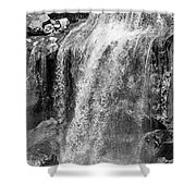 Paulina Falls Black And White Art Shower Curtain by David Millenheft