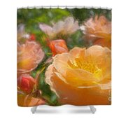 Peach Yellow Roses Shower Curtain