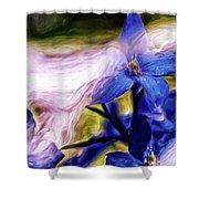 Peek A Blue Shower Curtain