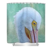 Pelican Beauty Shower Curtain