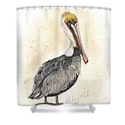 Pelican No 1 Shower Curtain
