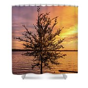 Percy Priest Lake Sunset Young Tree Shower Curtain by D K Wall