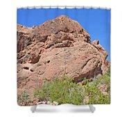 Phoenix Arizona Papago Park  Blue Sky Red Rocks Scrub Vegetation Yellow Flowers 3182019 5340 Shower Curtain