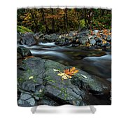 Pieces Of Autumn Shower Curtain
