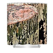 Pilings In Abstract Shower Curtain
