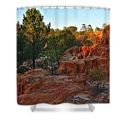 Pine Trees On Red Cliffs Shower Curtain