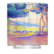 Pines Along The Shore - Digital Remastered Edition Shower Curtain