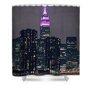 Pink Empire State Building Shower Curtain