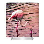 Pink Flamingo Two Shower Curtain