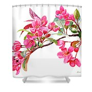 Pink Flowering Tree Blossoms Shower Curtain