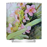 Pink Moth Orchids II Shower Curtain
