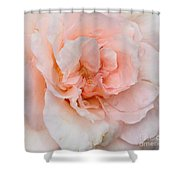 Pink Pedals Shower Curtain