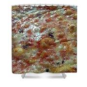 Pizzeria Ai Marmi Shower Curtain