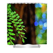 Plants, Trees And Flowers Shower Curtain