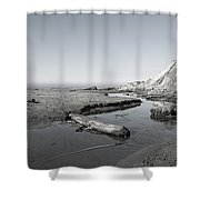 Point Arena Beach California Shower Curtain