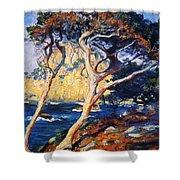 Point Lobos Trees 1919 Shower Curtain