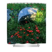 Poppies And Rocks Shower Curtain