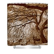 Portrait Of A Tree In Infrared Shower Curtain