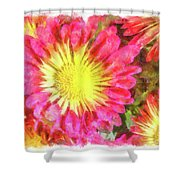 Pretty Fall Beauties Shower Curtain