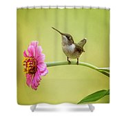 Pretty On Pink Shower Curtain