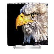 Profile Of Bald Eagle Shower Curtain