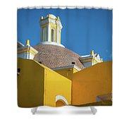 Puebla Library Shower Curtain
