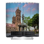 Puebla Zocalo And Cathedral Shower Curtain