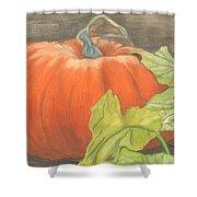 Pumpkin In Patch Shower Curtain