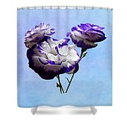 Purple And White Lisianthus Shower Curtain