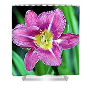 Purple And Yellow Flower Shower Curtain