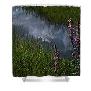 Purple Daydream Shower Curtain