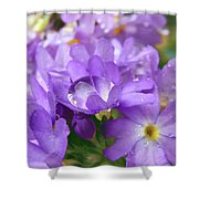 Purple Pearl Shower Curtain