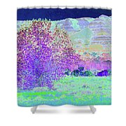 Purple Tree Reverie Shower Curtain
