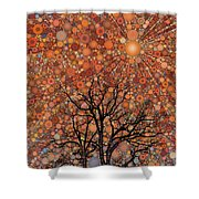 Radiant Morning Shower Curtain