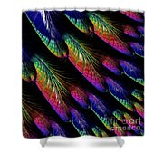 Rainbow Colored Peacock Tail Feathers Fractal Abstract Shower Curtain by Rose Santuci-Sofranko