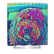 Rainbow Pup Shower Curtain