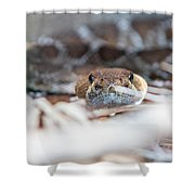 Rattle Snake Shower Curtain