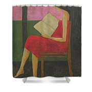 Reading On The Porch Shower Curtain