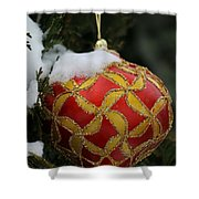 Red And Gold Ornament Shower Curtain