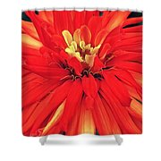 Red Bliss Shower Curtain